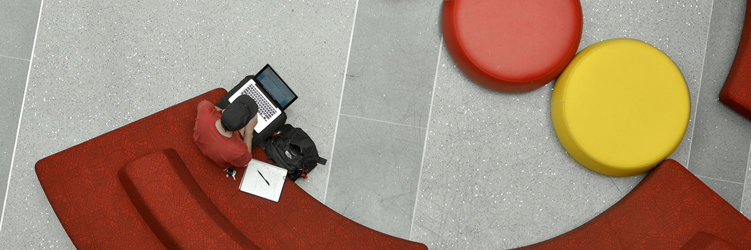 A student works in NC State's Talley Student Union.